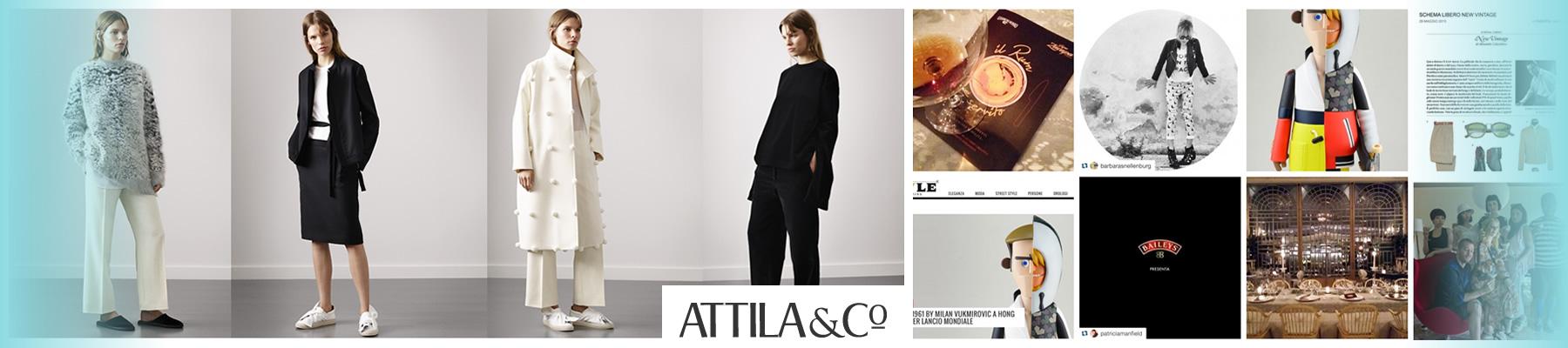 Attila - Web social aggregator